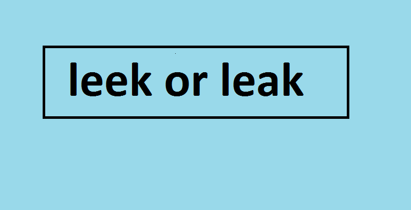 leek or leak
